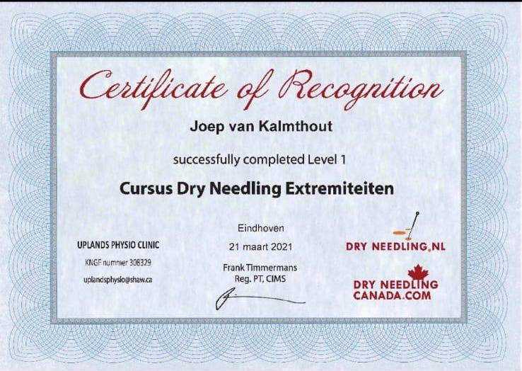 dry needling certificaat